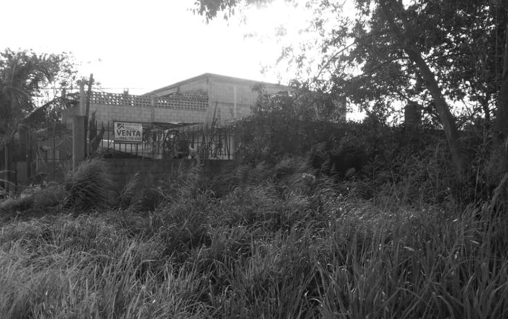 Foto de terreno comercial en venta en  , región 227, benito juárez, quintana roo, 1281973 No. 04
