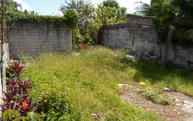Foto de local en venta en  , región 240, benito juárez, quintana roo, 1259129 No. 06