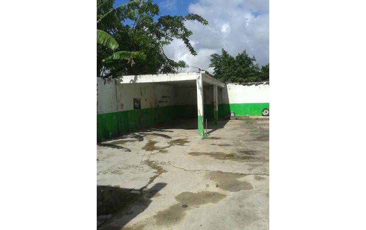 Foto de terreno comercial en venta en  , región 90, benito juárez, quintana roo, 1255505 No. 04
