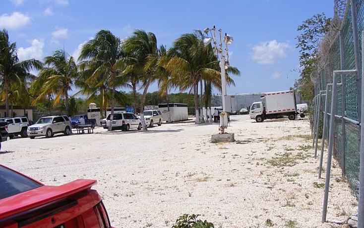 Foto de terreno comercial en renta en  , región 97, benito juárez, quintana roo, 1132963 No. 02