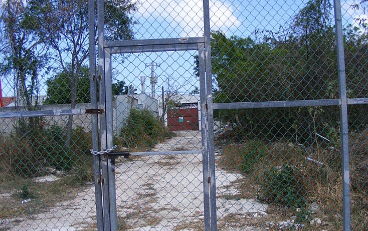 Foto de terreno comercial en renta en  , región 97, benito juárez, quintana roo, 1132963 No. 06