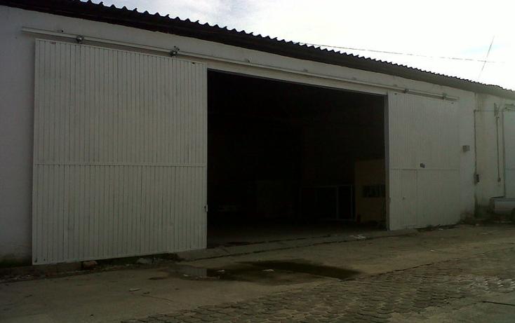Foto de nave industrial en renta en  , renacimiento, acapulco de ju?rez, guerrero, 1026649 No. 02