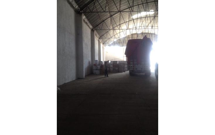 Foto de nave industrial en venta en  , renacimiento, acapulco de ju?rez, guerrero, 1343693 No. 02