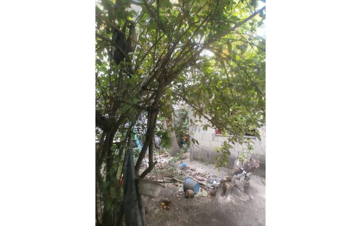Foto de terreno habitacional en venta en  , renovación i, carmen, campeche, 1249867 No. 04