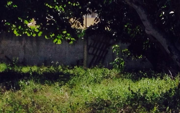 Foto de terreno habitacional en venta en  , reparto granjas, m?rida, yucat?n, 623388 No. 01