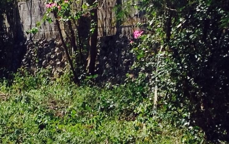 Foto de terreno habitacional en venta en  , reparto granjas, m?rida, yucat?n, 623388 No. 05