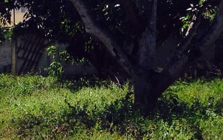 Foto de terreno habitacional en venta en  , reparto granjas, m?rida, yucat?n, 623388 No. 08