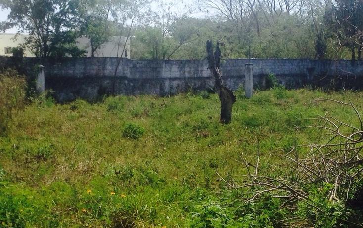 Foto de terreno habitacional en venta en  , reparto granjas, m?rida, yucat?n, 623388 No. 15