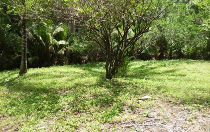 Foto de terreno habitacional en venta en reserva los encinos, camino de los robles, teuchitlán, teuchitlán, jalisco, 1473261 no 05