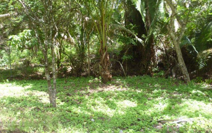 Foto de terreno habitacional en venta en reserva los encinos, camino de los robles, teuchitlán, teuchitlán, jalisco, 1473261 no 06