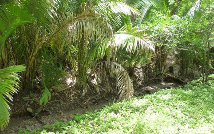 Foto de terreno habitacional en venta en reserva los encinos, camino de los robles, teuchitlán, teuchitlán, jalisco, 1473261 no 07