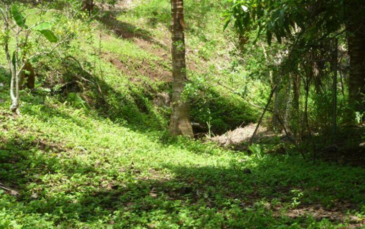 Foto de terreno habitacional en venta en reserva los encinos, camino de los robles, teuchitlán, teuchitlán, jalisco, 1473261 no 10