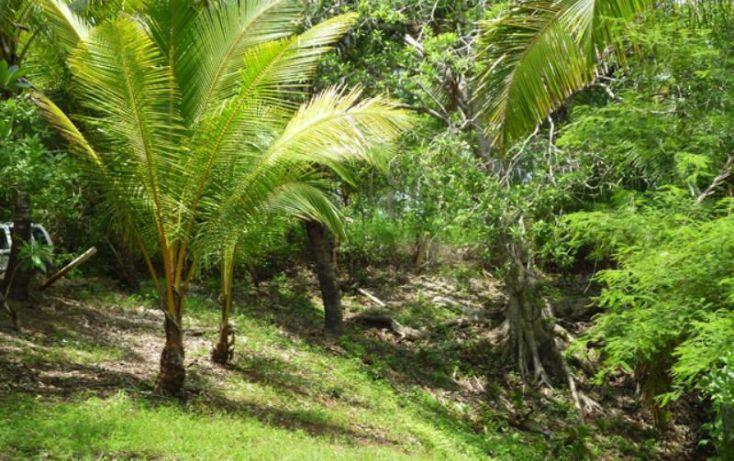 Foto de terreno habitacional en venta en reserva los encinos, camino de los robles, teuchitlán, teuchitlán, jalisco, 1473261 no 12