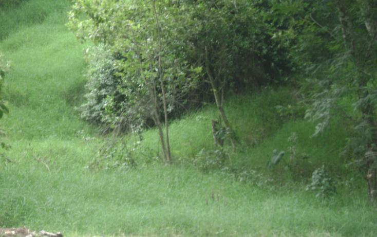 Foto de terreno habitacional en venta en  , reserva territorial, xalapa, veracruz de ignacio de la llave, 1116681 No. 03