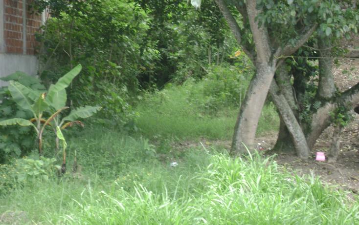 Foto de terreno habitacional en venta en  , reserva territorial, xalapa, veracruz de ignacio de la llave, 1116701 No. 06