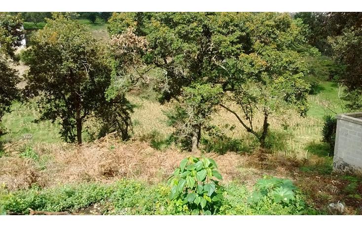 Foto de terreno habitacional en venta en  , reserva territorial, xalapa, veracruz de ignacio de la llave, 1296213 No. 02