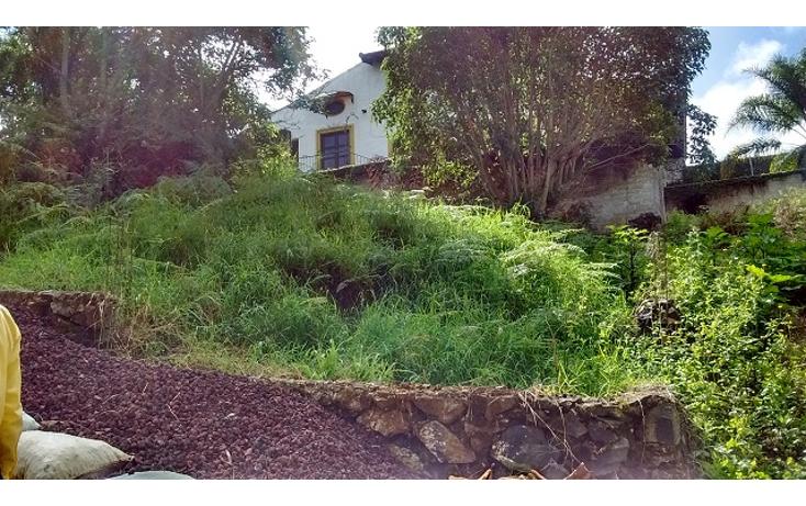 Foto de terreno habitacional en venta en  , reserva territorial, xalapa, veracruz de ignacio de la llave, 1296213 No. 05
