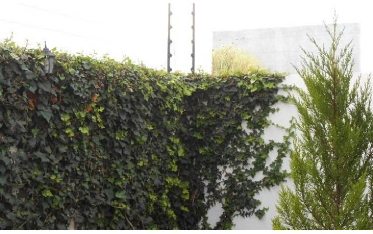 Foto de casa en venta en  , residencial el refugio, querétaro, querétaro, 1337833 No. 27