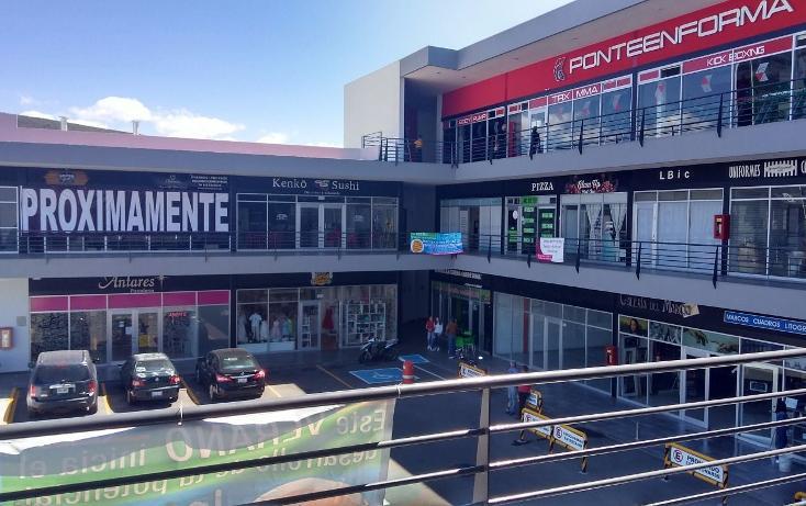 Foto de local en renta en  , residencial el refugio, querétaro, querétaro, 3427918 No. 07