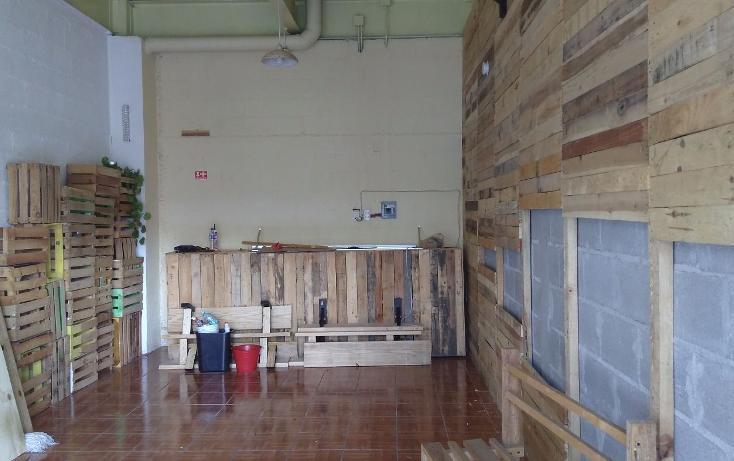 Foto de local en renta en  , residencial el refugio, querétaro, querétaro, 3427918 No. 08