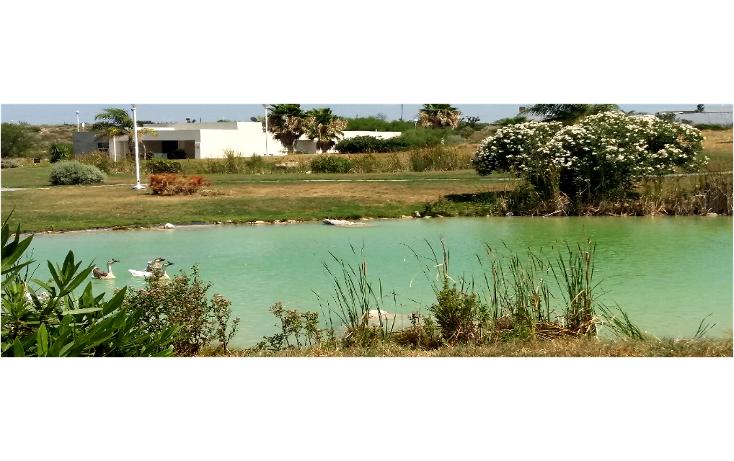Foto de terreno habitacional en venta en  , residencial hacienda san pedro, general zuazua, nuevo león, 1444445 No. 06