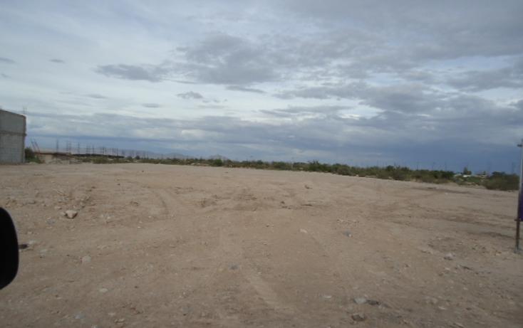 Foto de terreno habitacional en renta en  , residencial ibero, torreón, coahuila de zaragoza, 1128077 No. 02