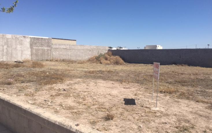 Foto de terreno habitacional en venta en  , residencial jard?n, delicias, chihuahua, 1552486 No. 05