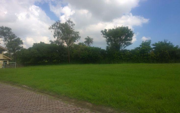 Foto de terreno habitacional en venta en, residencial lagunas de miralta, altamira, tamaulipas, 1378837 no 04
