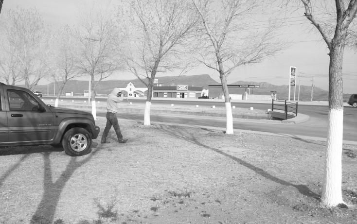 Foto de terreno habitacional en venta en  , residencial los leones, aldama, chihuahua, 1057009 No. 03