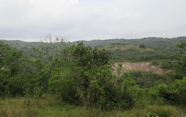 Foto de terreno habitacional en venta en  , residencial monte magno, xalapa, veracruz de ignacio de la llave, 1182161 No. 01