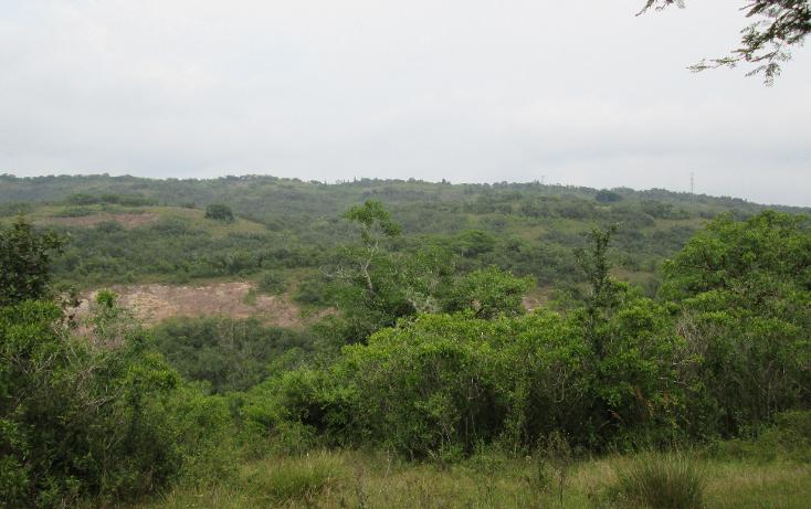 Foto de terreno habitacional en venta en  , residencial monte magno, xalapa, veracruz de ignacio de la llave, 1182161 No. 02