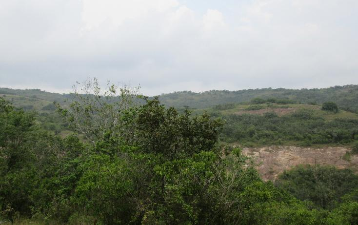 Foto de terreno habitacional en venta en  , residencial monte magno, xalapa, veracruz de ignacio de la llave, 1182161 No. 05