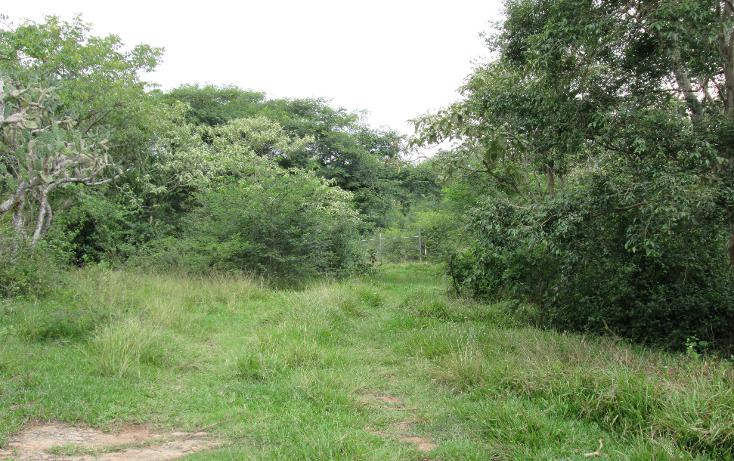 Foto de terreno habitacional en venta en  , residencial monte magno, xalapa, veracruz de ignacio de la llave, 1182161 No. 07