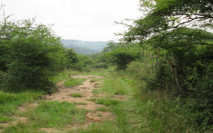 Foto de terreno habitacional en venta en  , residencial monte magno, xalapa, veracruz de ignacio de la llave, 1182161 No. 08