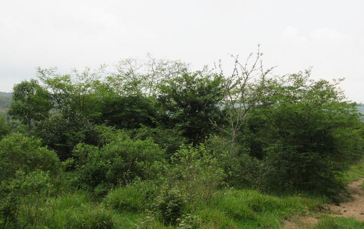 Foto de terreno habitacional en venta en  , residencial monte magno, xalapa, veracruz de ignacio de la llave, 1182161 No. 09