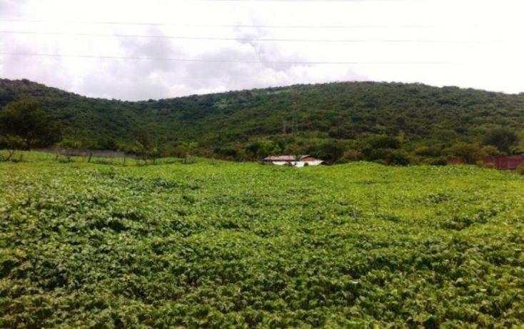 Foto de terreno habitacional en venta en, residencial yautepec, yautepec, morelos, 1034755 no 11