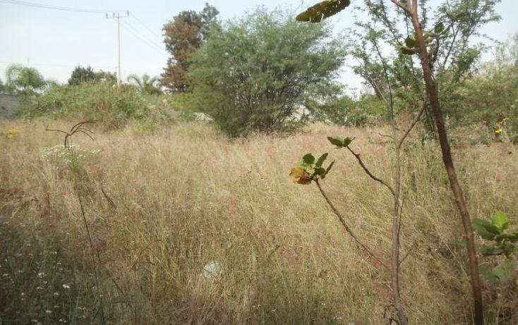 Foto de terreno industrial en venta en retorno de las alondras 129, los álamos, tlajomulco de zúñiga, jalisco, 1493829 no 04