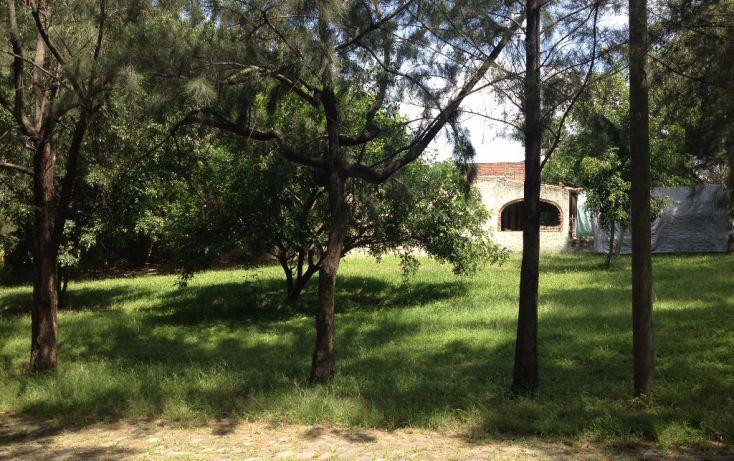 Foto de terreno habitacional en venta en retorno del sol lote terreno 11b 451, plaza del sol, zapopan, jalisco, 1715360 no 06
