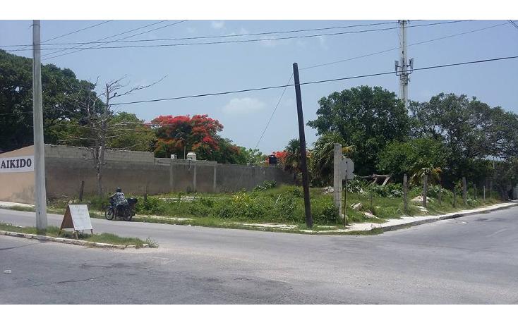 Foto de terreno comercial en venta en  , revolución, progreso, yucatán, 1241079 No. 03