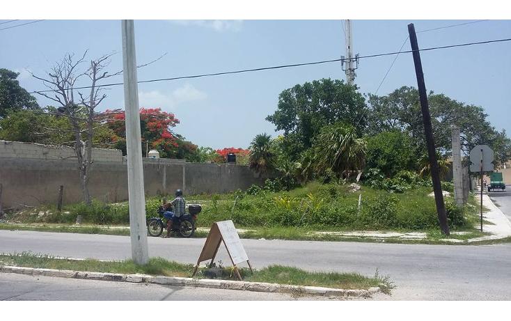 Foto de terreno comercial en venta en  , revolución, progreso, yucatán, 1241079 No. 04
