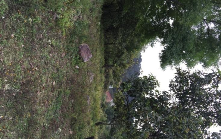 Foto de terreno habitacional en venta en  , rincón de estradas, valle de bravo, méxico, 829603 No. 04