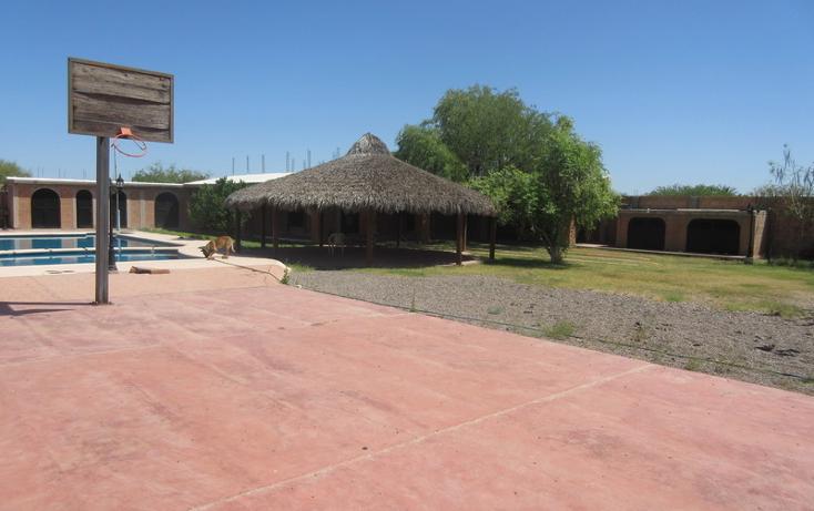 Foto de rancho en venta en  , rincón de la herradura, hermosillo, sonora, 1847550 No. 13