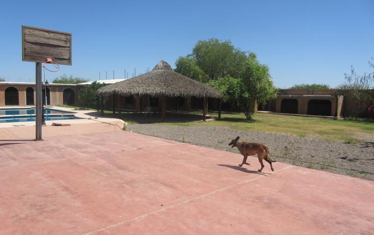 Foto de rancho en venta en  , rincón de la herradura, hermosillo, sonora, 1847550 No. 14