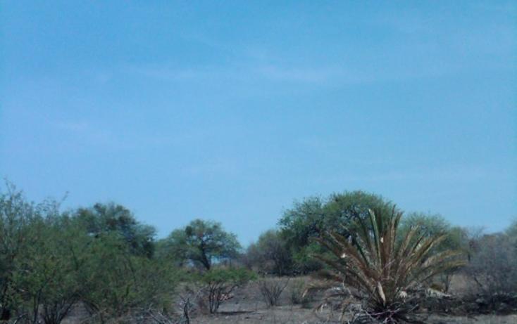 Foto de terreno habitacional en venta en  , rincón de tamayo centro, celaya, guanajuato, 2714574 No. 06