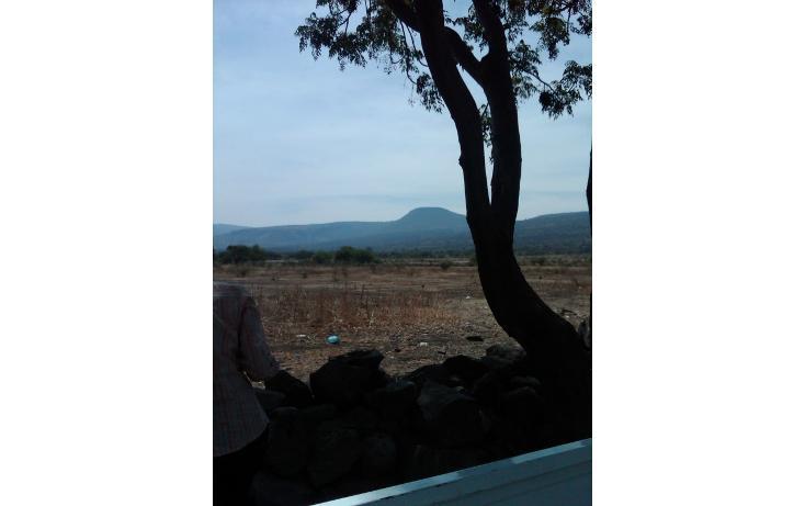 Foto de terreno habitacional en venta en  , rincón de tamayo centro, celaya, guanajuato, 448300 No. 01