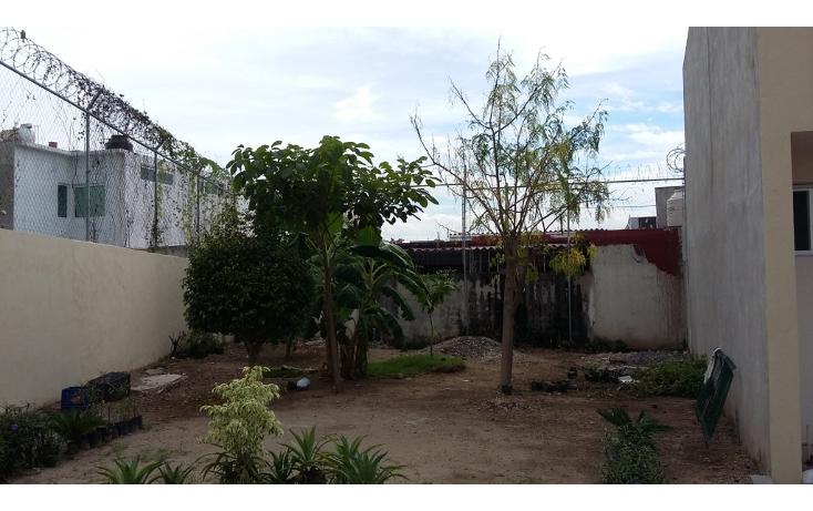 Foto de terreno habitacional en venta en  , rincón del cielo, bahía de banderas, nayarit, 1397543 No. 05