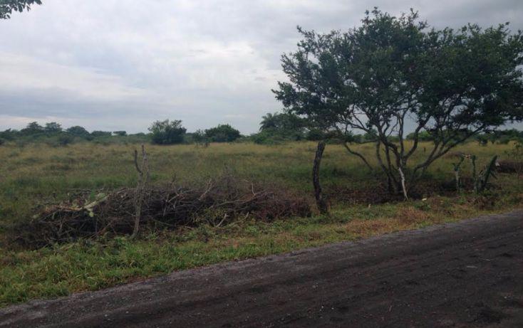 Foto de terreno habitacional en venta en, rincón del copite, medellín, veracruz, 1553132 no 04