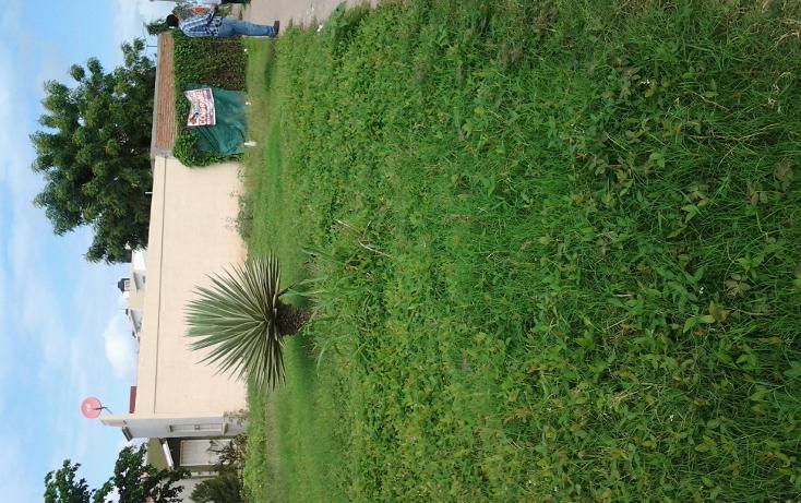 Foto de terreno comercial en venta en  , rincón real, culiacán, sinaloa, 1275047 No. 02