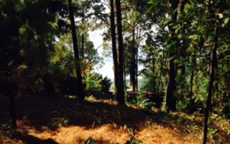 Foto de terreno habitacional en venta en  , rinc?n villa del valle, valle de bravo, m?xico, 829543 No. 05