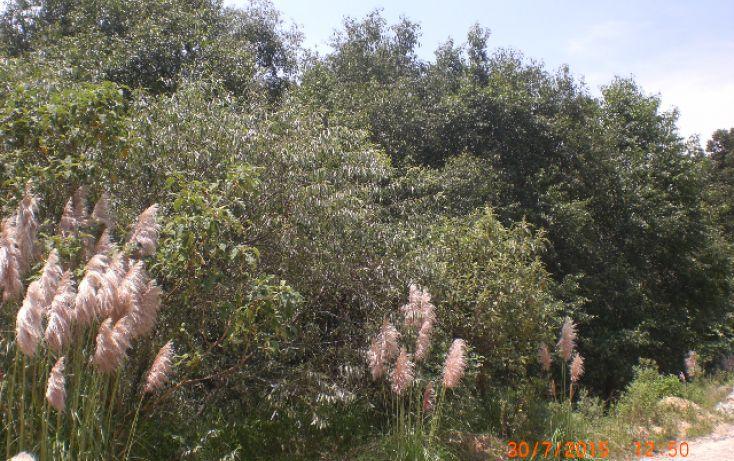 Foto de terreno habitacional en venta en rinconada del murmullo, bosque real, huixquilucan, estado de méxico, 1375585 no 04